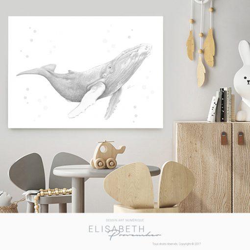 Affiche belle baleine «ROSABELLE» - Elisabeth Provencher, artiste